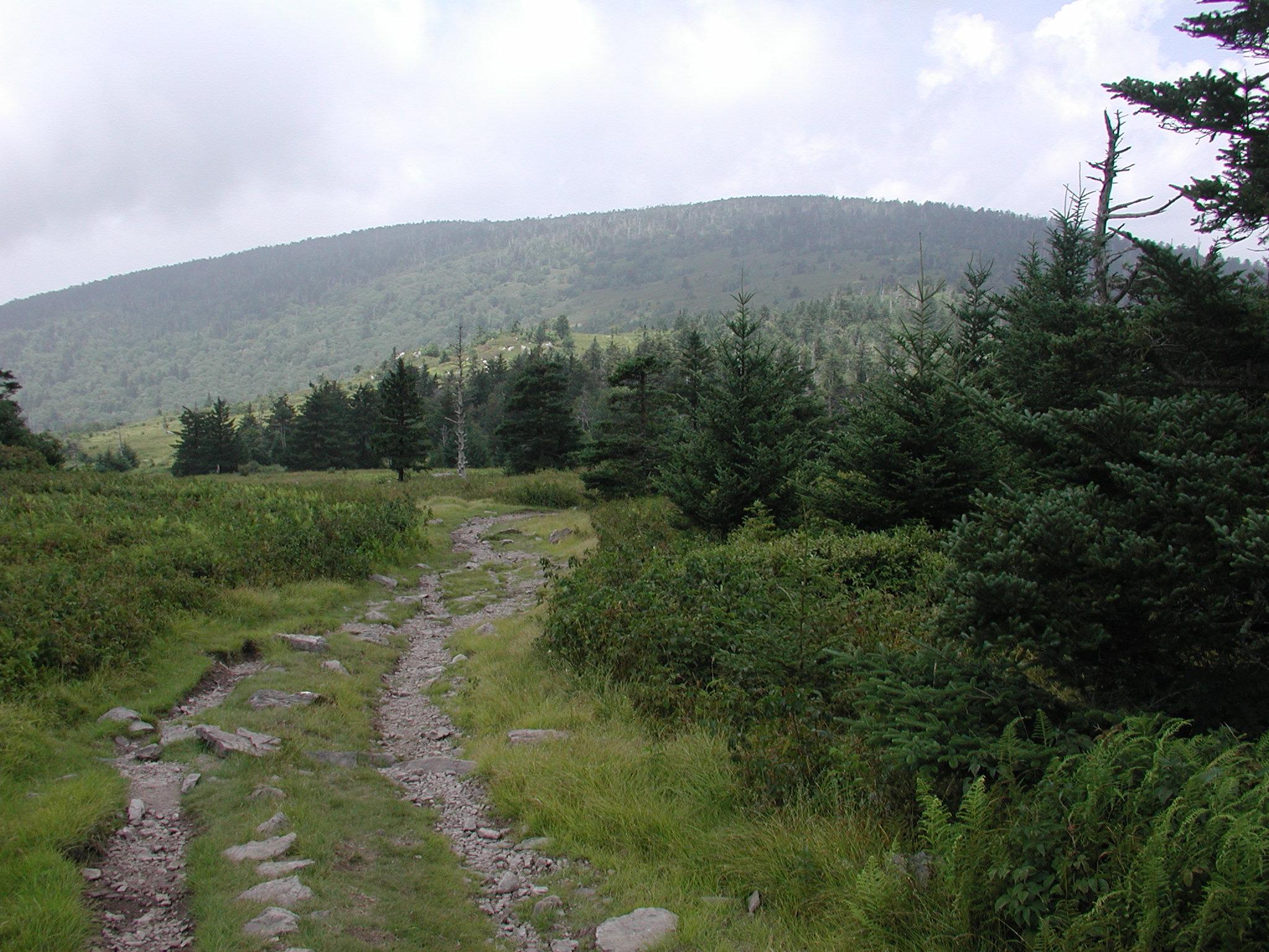 72dd04ebc Virginia Hiking | Exploring some of Virginia's best hikes!